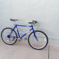Blue bike tales
